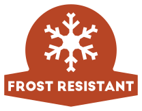 Frost Resistant